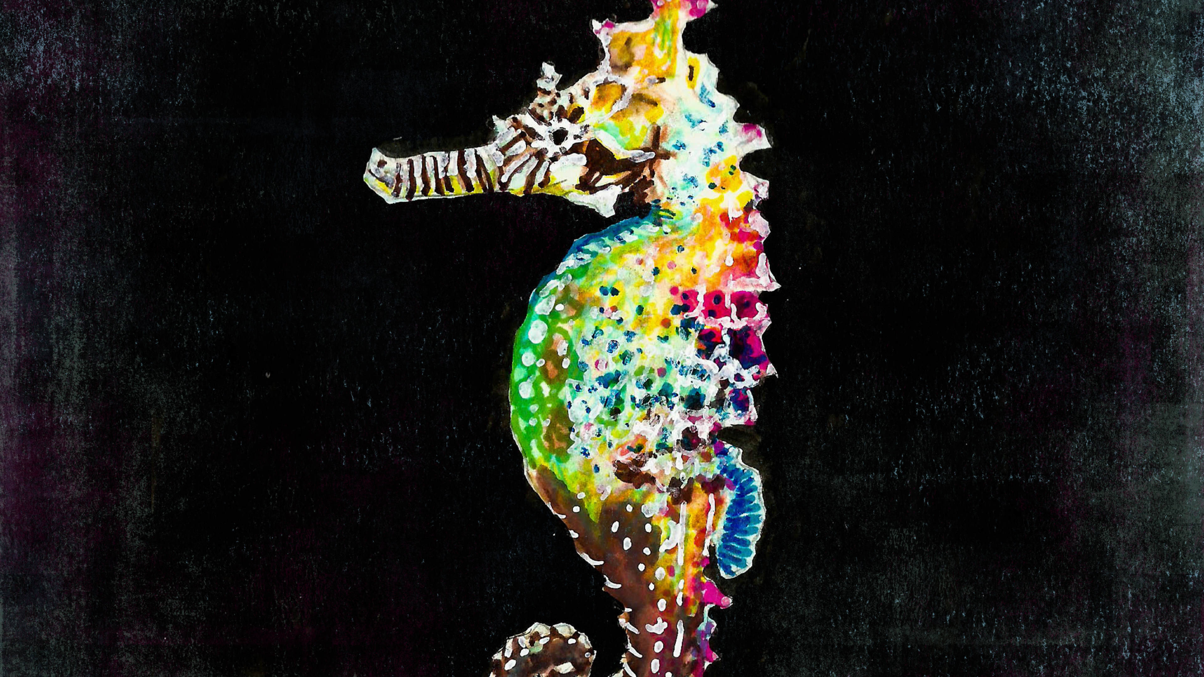 ColorfulSeahorse